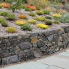 Basalt-Retaining-Wall-with-heather.jpg