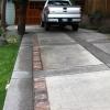 banyan-tree-landscape-concrete_McKee-Custom-concrete-driveway-brick-inlay.jpg