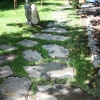 banyan-tree-landscape-pathways-IMG_9136.jpg